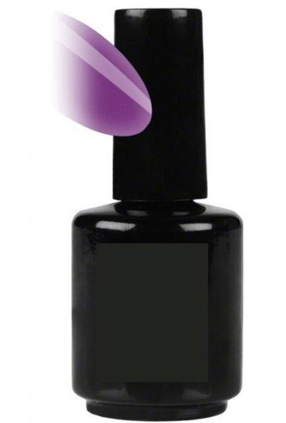 Verniz Gel V069 - Purple Passion