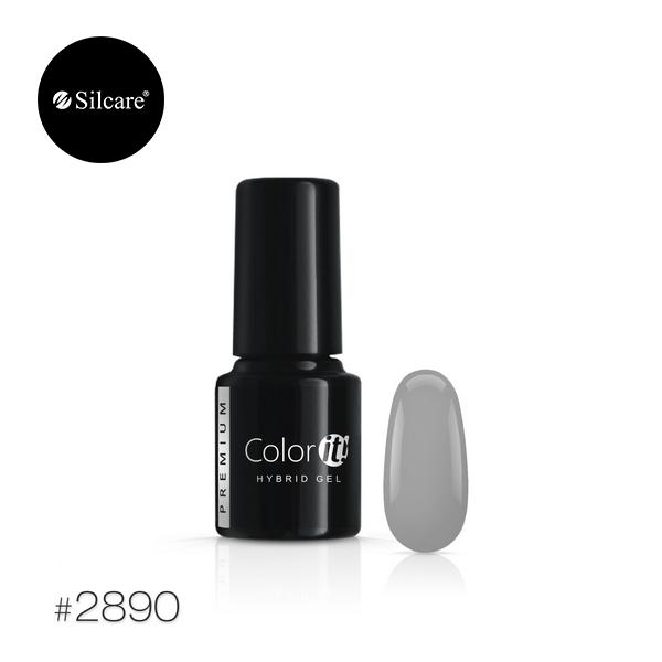 ColorIT Premium 2890