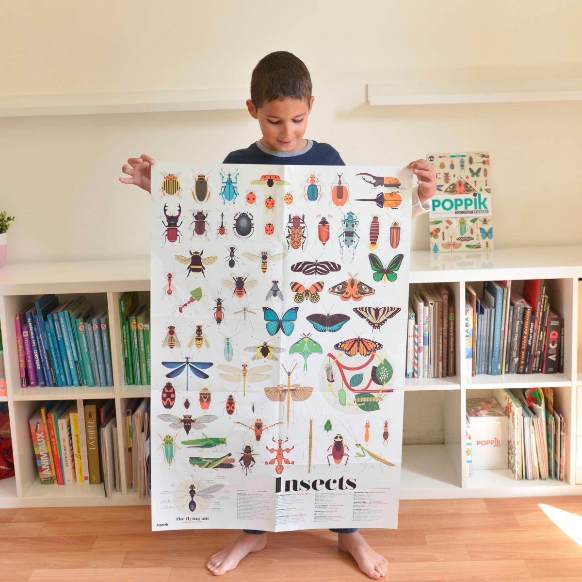 Poster Gigante Atuocolantes- Insectos