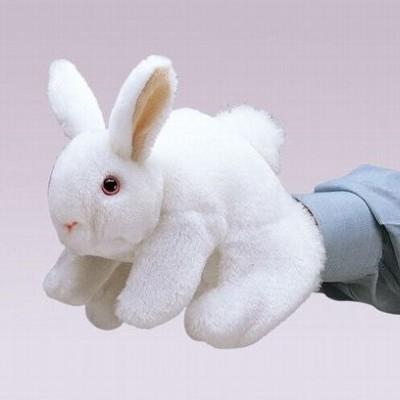 Coelhinho Branco