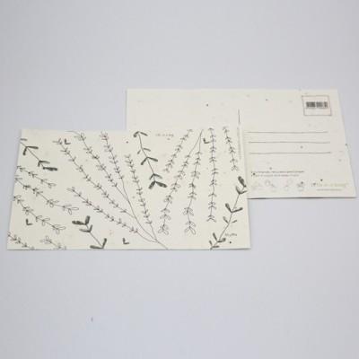 Postal Violeta Cor de Rosa c/ envelope