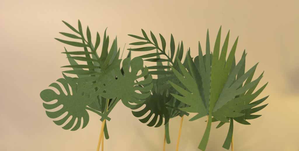 Conjunto de 6 Mini topo de bolo folhas de palmeira
