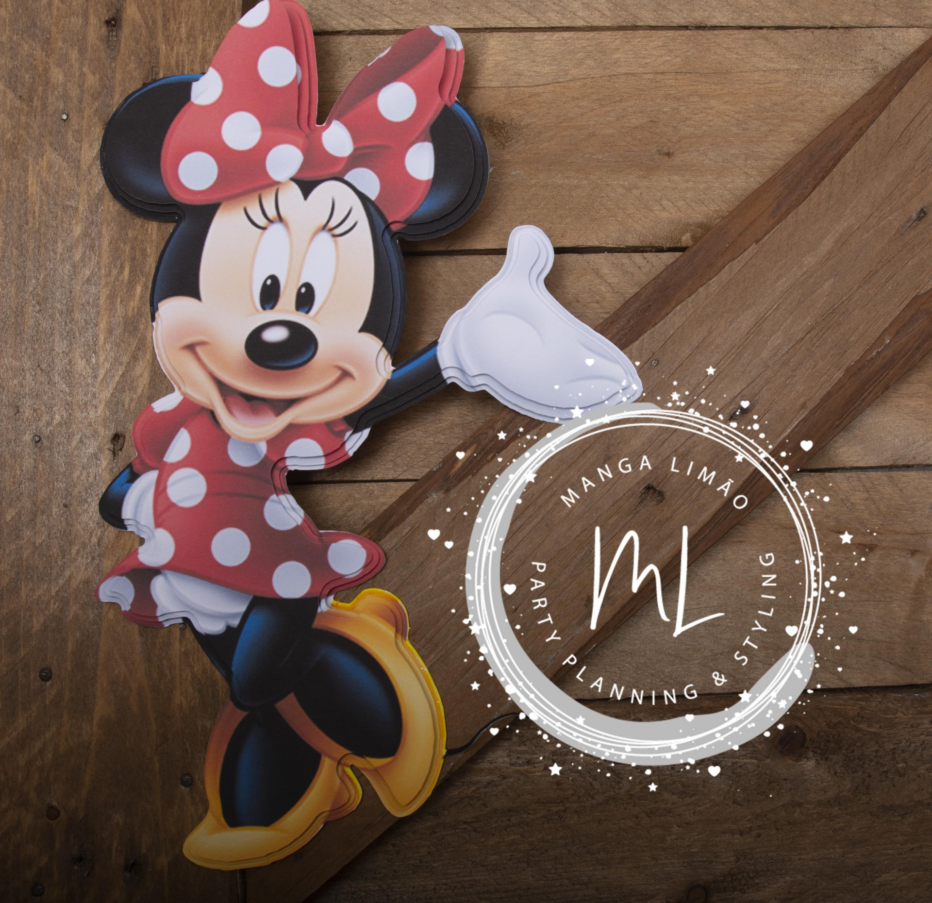 Minnie 2D
