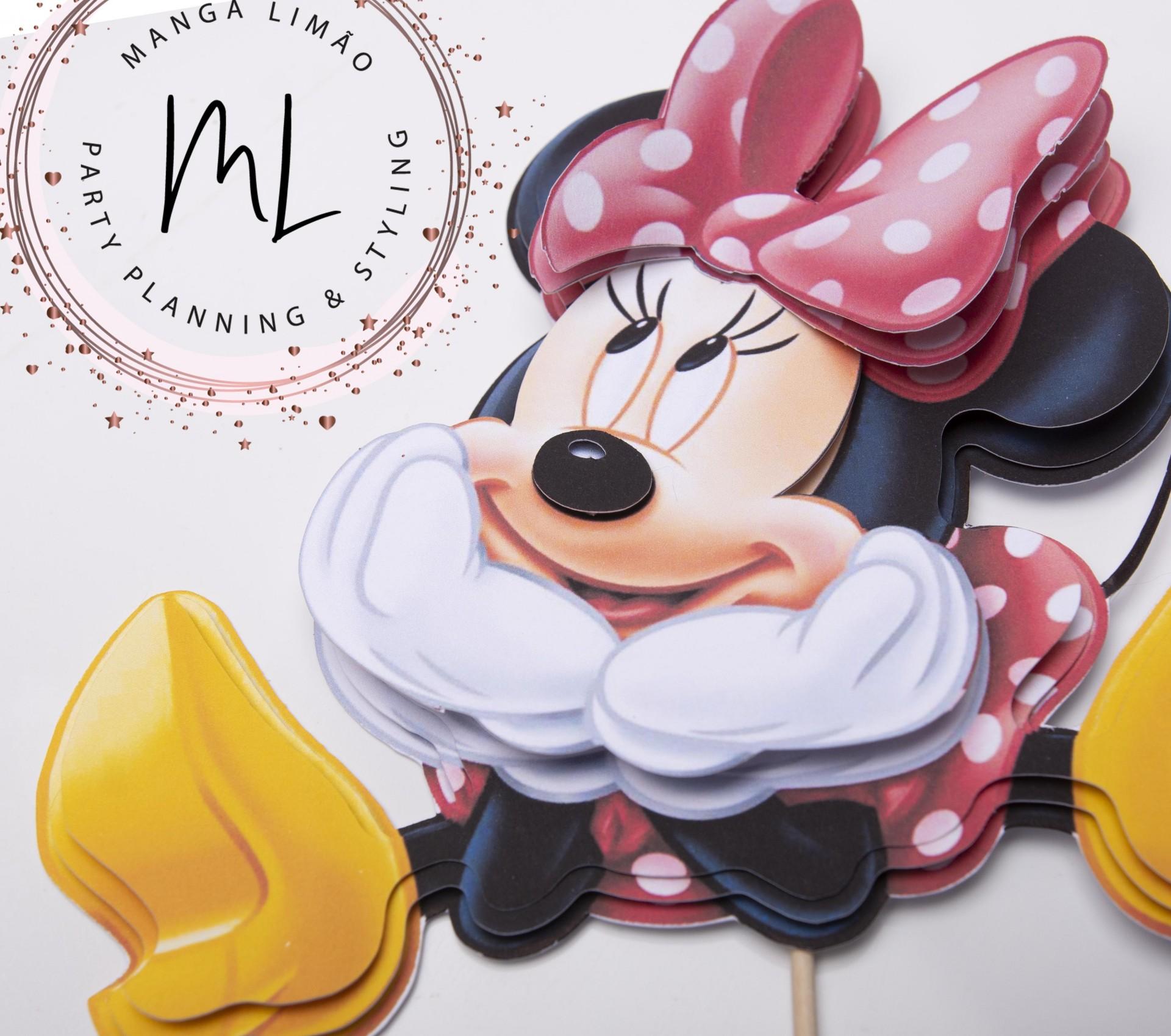Minnie em 2 dimensões