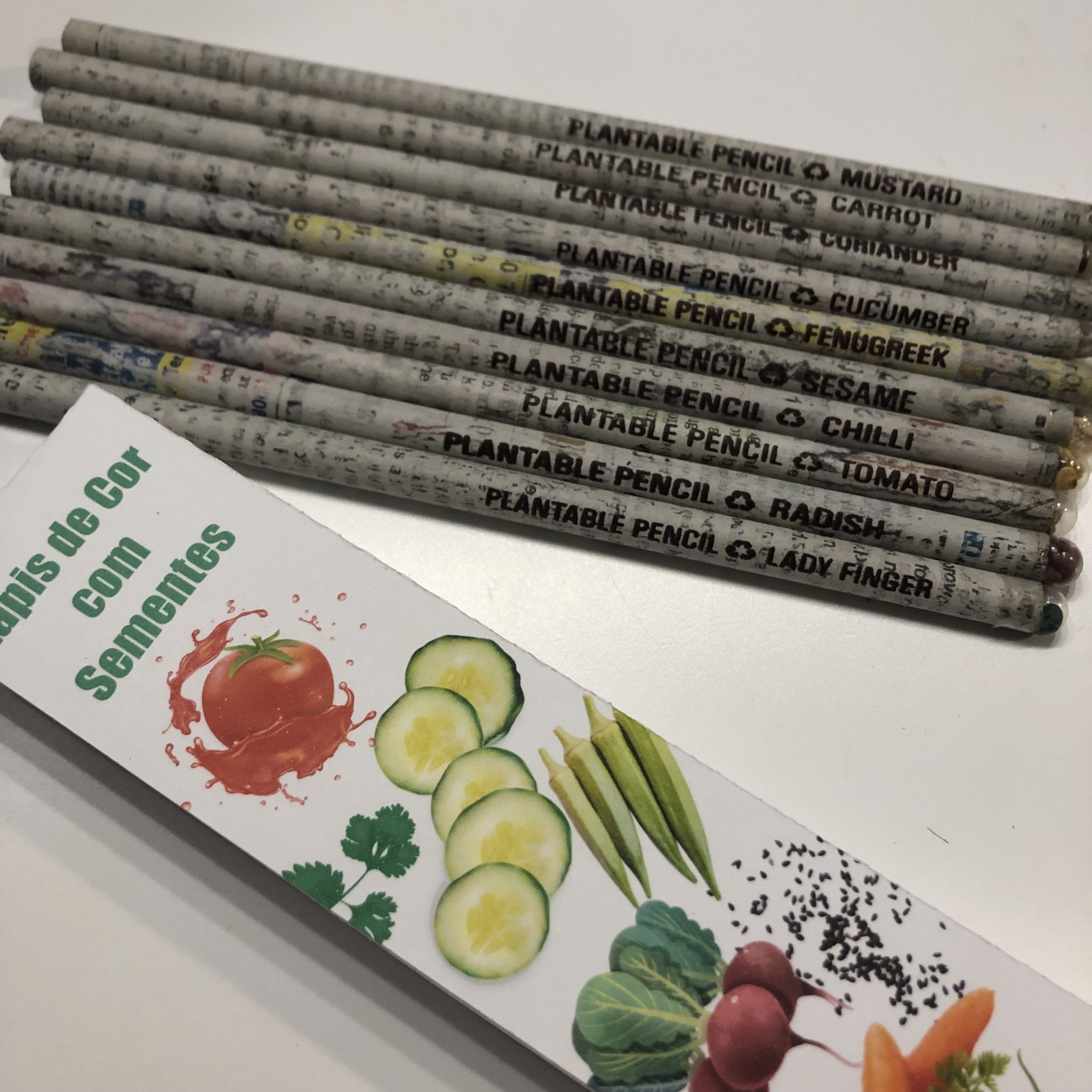 Lápis de cor semente ( Sementes Variadas )
