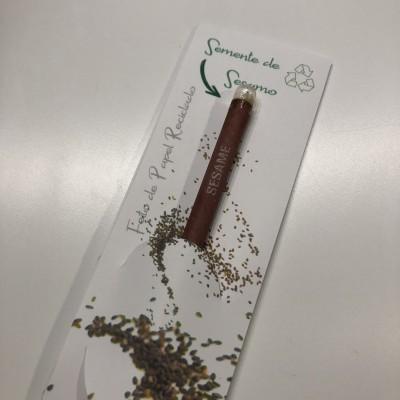 Lápis de carvão semente em papel reciclado