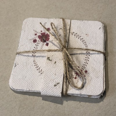 Pack 4 cartões em Papel Vivo ou pape semente