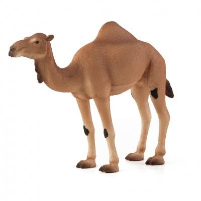 Dromedário ou Camelo-árabe - Figura animal