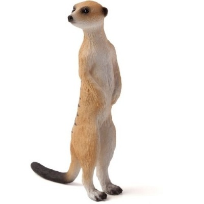 Suricata - Figura animal