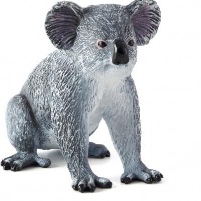 Coala - Figura animal