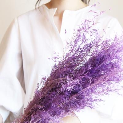 Muni Grass lilás