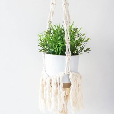 Plant Hanger Aloe