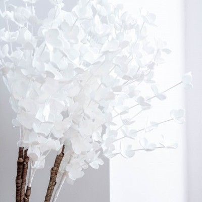 Rama Flores Brancas