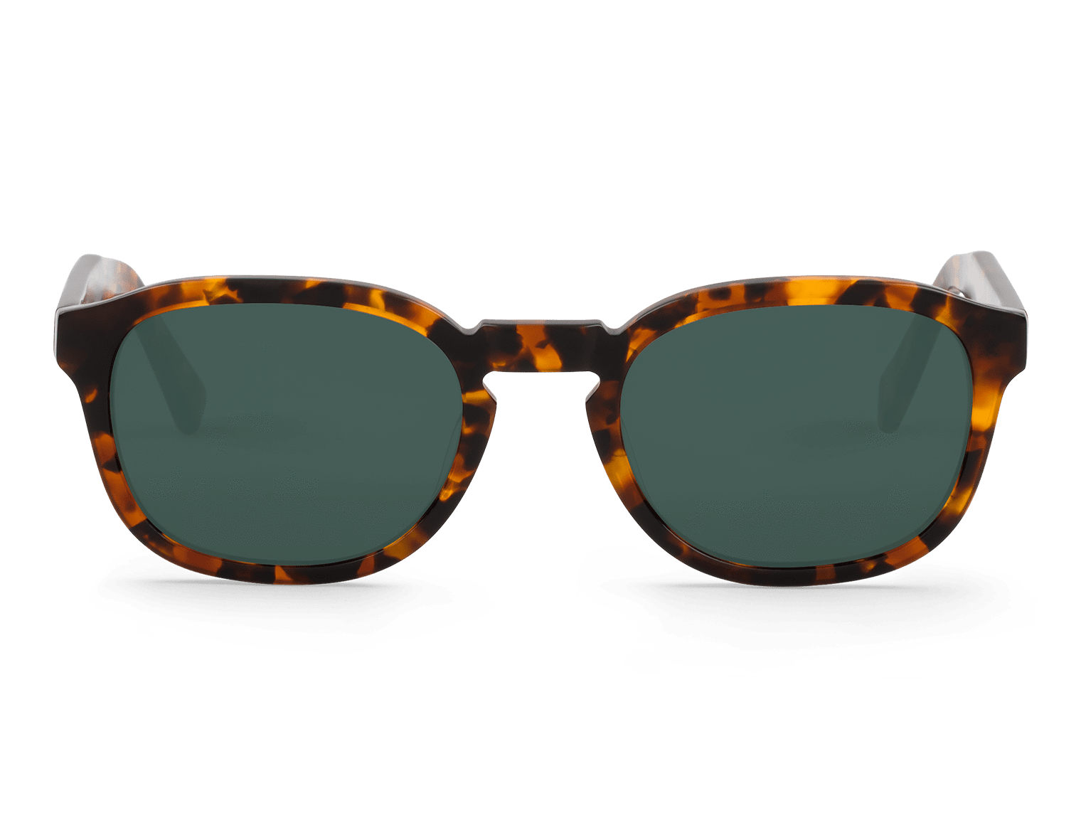 PILSEN | CHEETAH TORTOISE with classical lenses