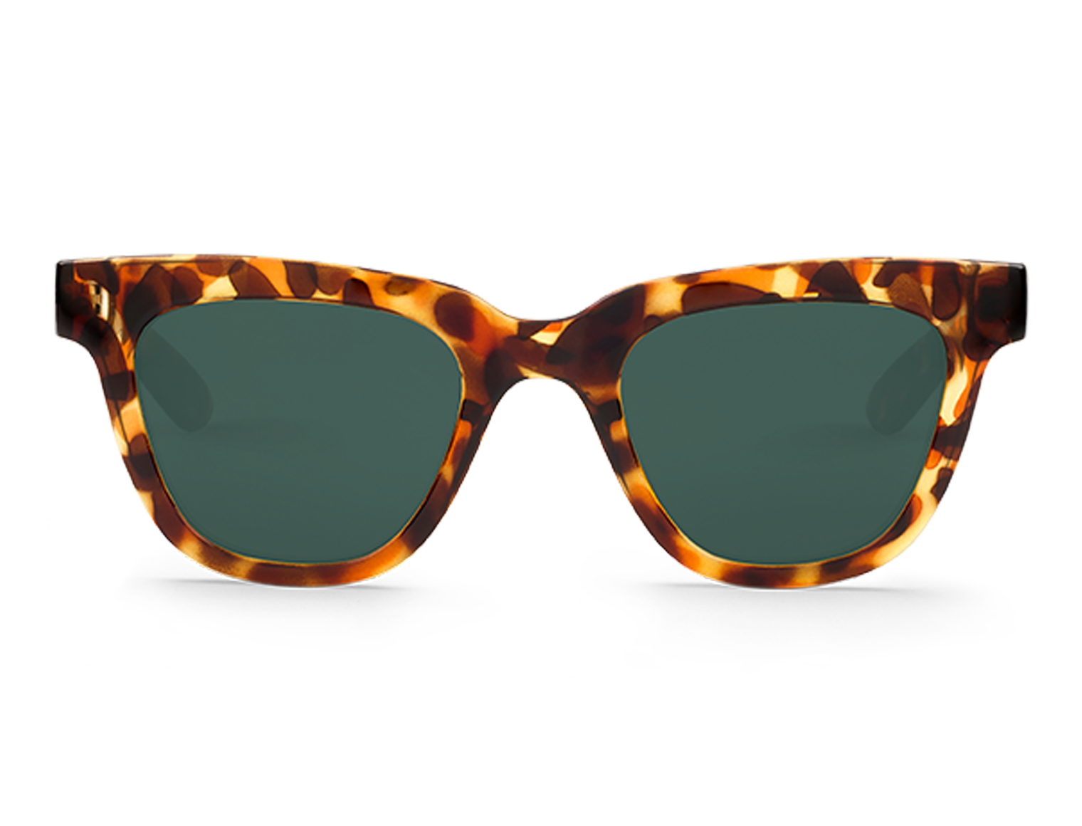 LETRAS | CHEETAH TORTOISE with classical lenses
