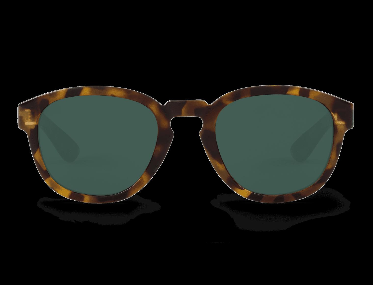PECKHAM | HC TORTOISE with classical lenses