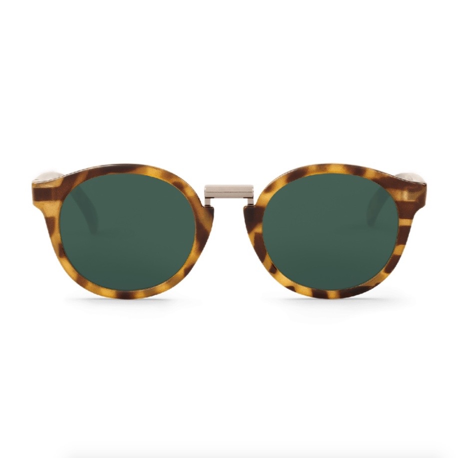 FITZROY | HC TORTOISE with classical lenses