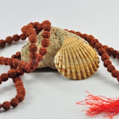 JapaMala Rudraksha