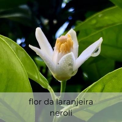 Neroli Enfleurage 30 gr
