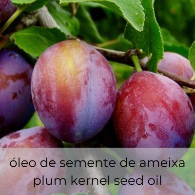 Óleo vegetal Prunus domestica 30 mL