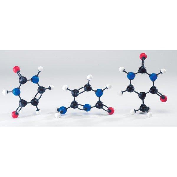 Modelo Moleculares De Ácidos Nucleicos