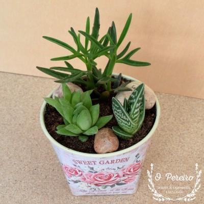 Vaso plástico florido peq. c/ 4 suculentas