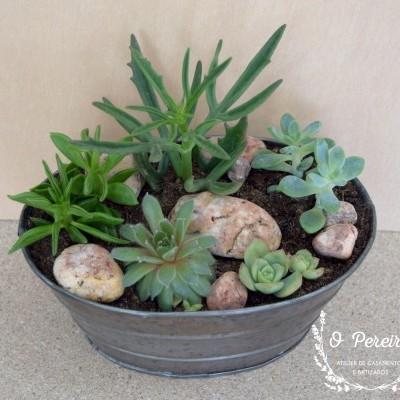 Floreira metal oval c/ 5 suculentas