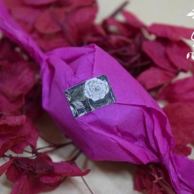 Camellia Invicta - Pack 2 un.