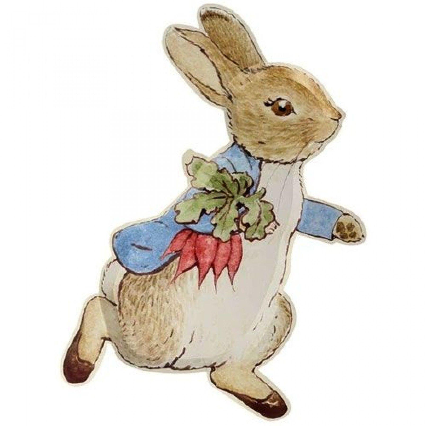 Pratos Travessa Peter Rabbit