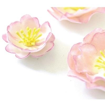 Conj. 5 Cortadores Rosa Selvagem