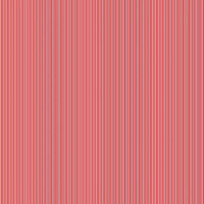 Risquinha camiseiro vermelho