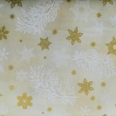 Estrelas e neve
