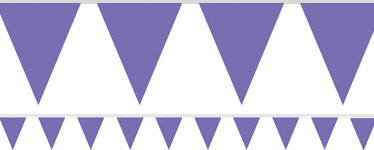 Banner Lilás