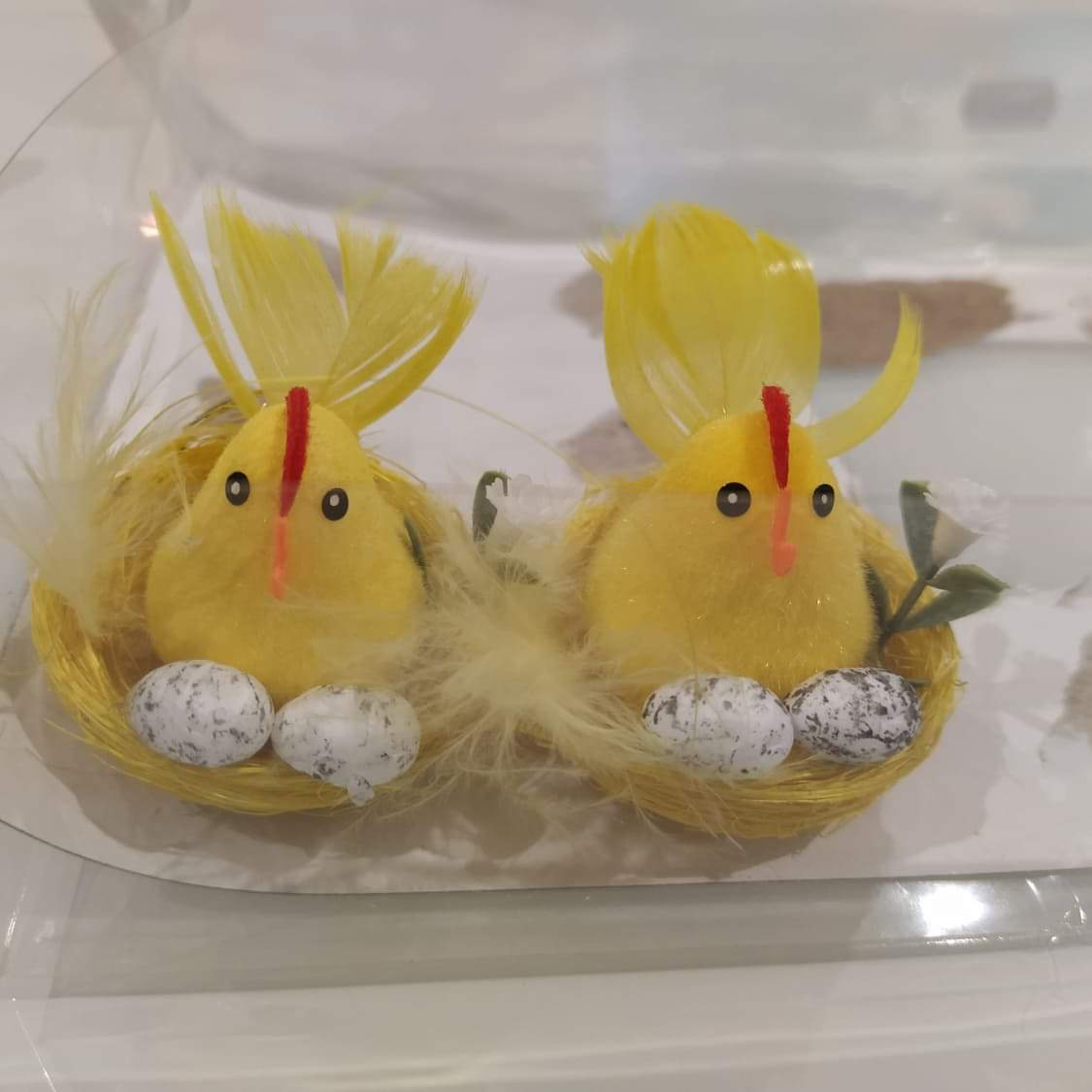 Galinha com ovos no ninho