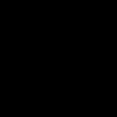 SELION C21 HD