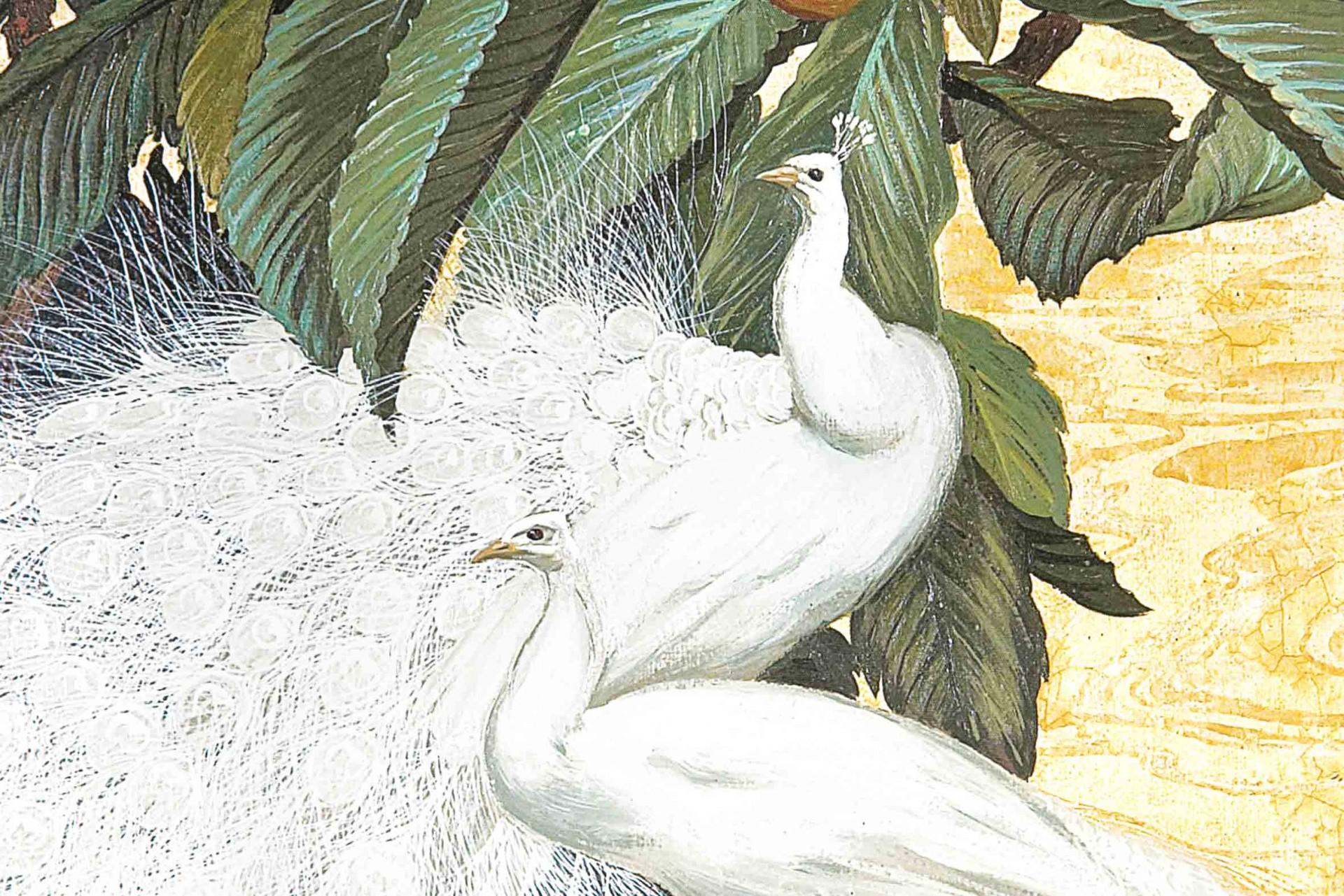 Quadro tela Pavão Branco