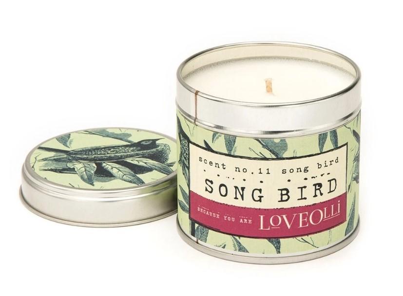 Loveolli-Vela Pequena Song Bird