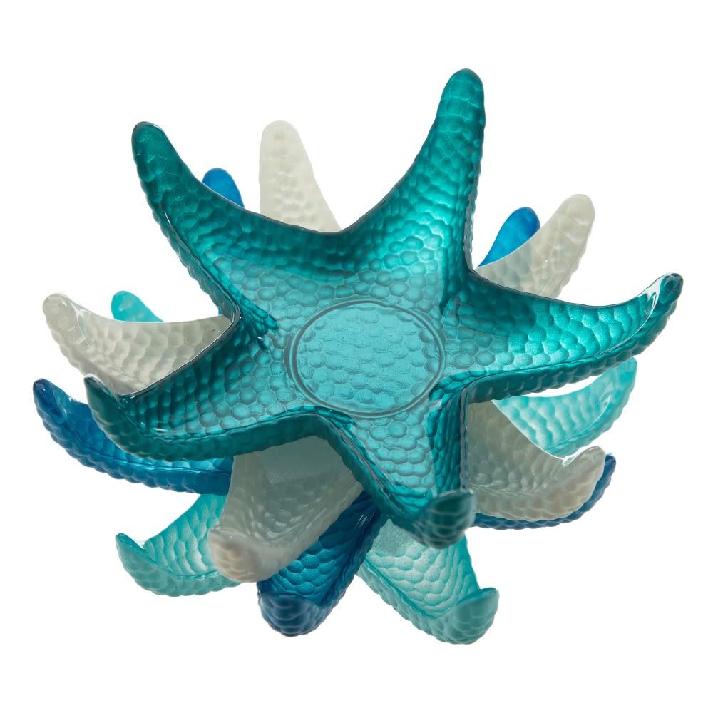 Conjunto de 4 estrelas do mar