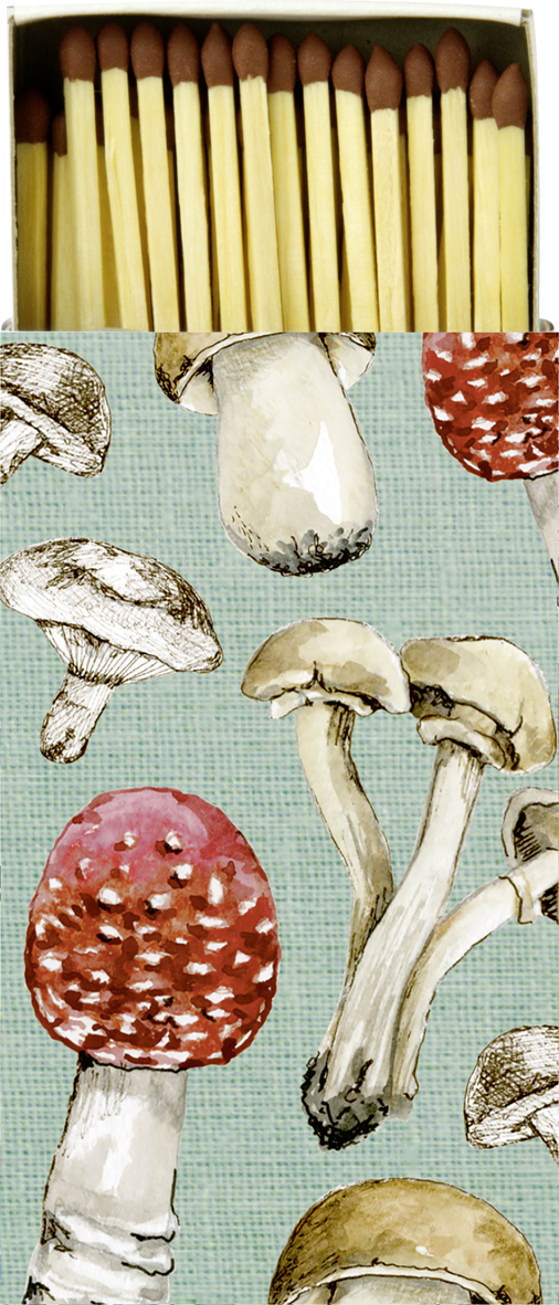 Caixa de fosforos Cogumelos- ihr