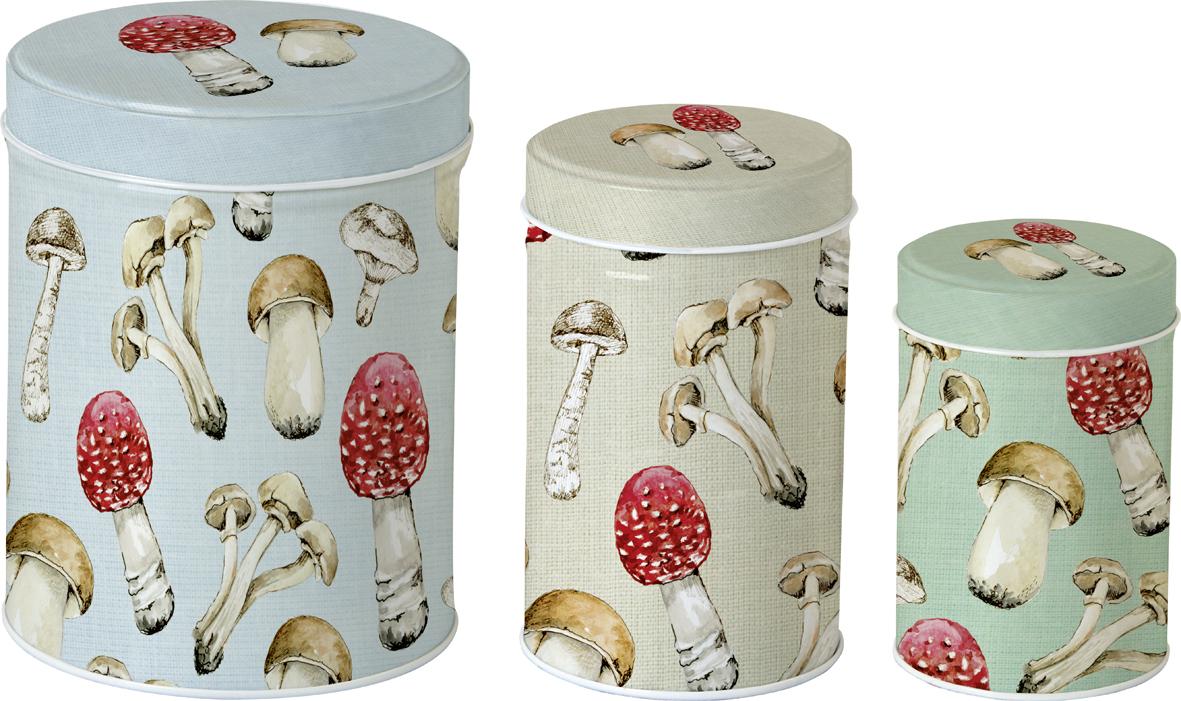 Conjunto 3 latas Cogumelos-ihr