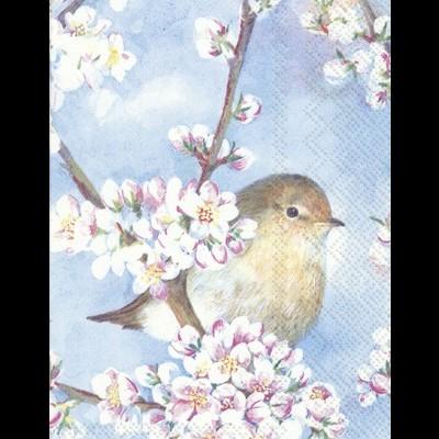 Guardanapos rectangulares passarinho e flores
