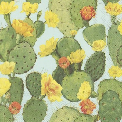 Guardanapos de papel Cactos em flor