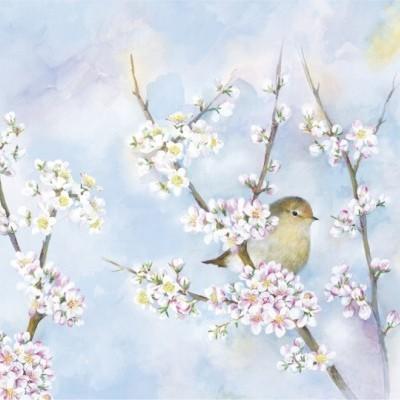 Individual harmonia,passarinho e flores
