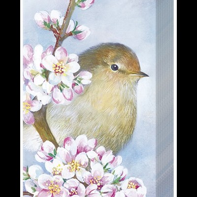 Lenços de papel passarinhos e flores -