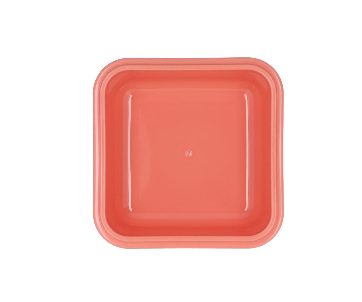 Caixas de alimentos arco-íris