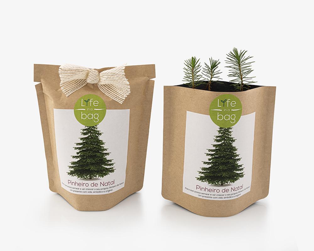 Grow Bag Pinheiro de Natal | Life in a bag