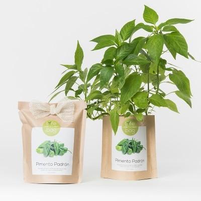 Grow Bag Pimento Padrão   Life in a bag