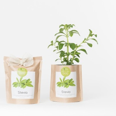 Grow Bag Stevia | Life in a bag