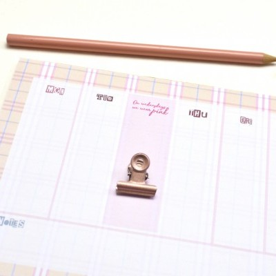 On Wednesdays we wear pink! - Planner Semanal