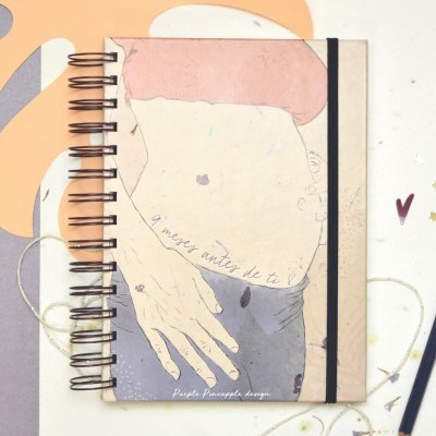 9 meses antes de ti - Livro de gravidez
